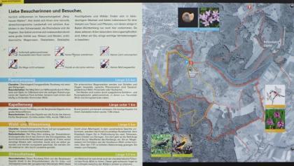 Infotafel zum Naturschutzgebiet Berghauser Matten