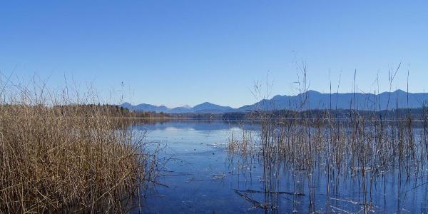 Blick über den See nach Murnau