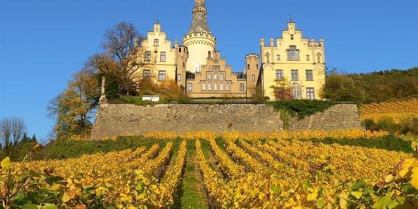 Schloss Arenfels_Herbst