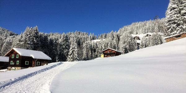 Gebiet Bodastall, Nähe Ausstiegsstelle Stelzer