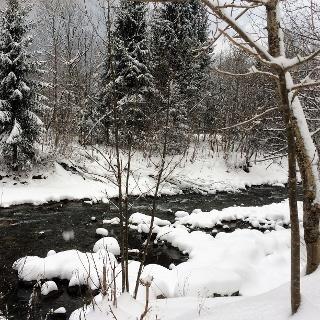 Winterlandschaft an der Ill