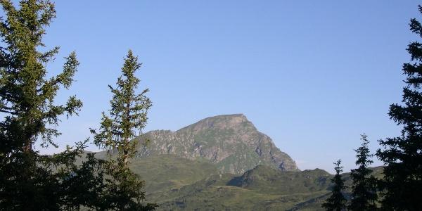 Gaisstein - 2.363m - einer höchsten Grasberge Europas