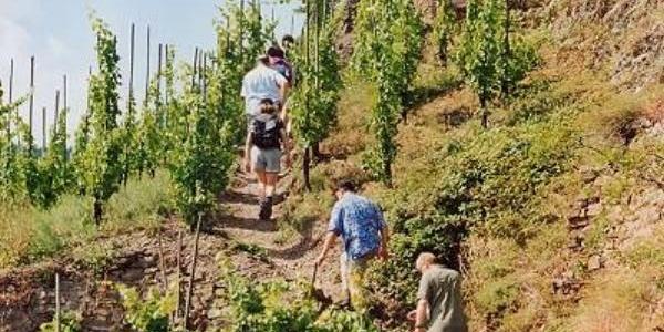 Calmont-Klettersteig
