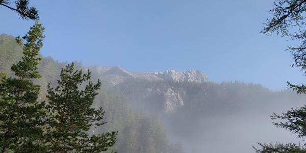 Im morgendlichen Nebel lässt sich bei der Jagdhütte der Gipfel erhaschen
