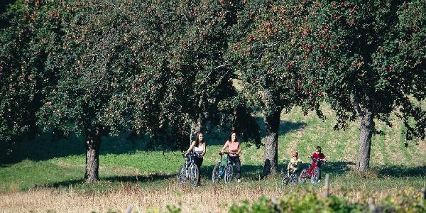 Radfahren im ApfelLand