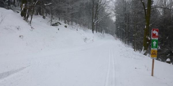 Kehre nach längerem Anstieg - links bergauf geht die Loipe weiter - geradeaus kommt man nach Kalteck