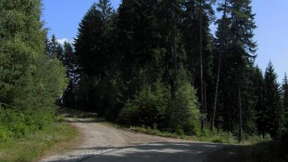 Kreuzung Frantoly