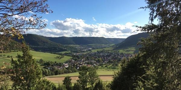 Im Naturschutzgebiet Haarberg-Wasserberg