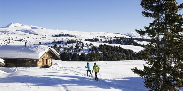 sci di fondo sull'Alpe di Villandroq