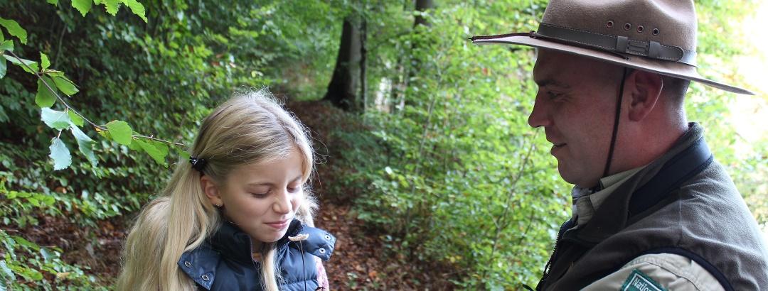 Im Müritz-Nationalpark gibt es viele Entdeckungen