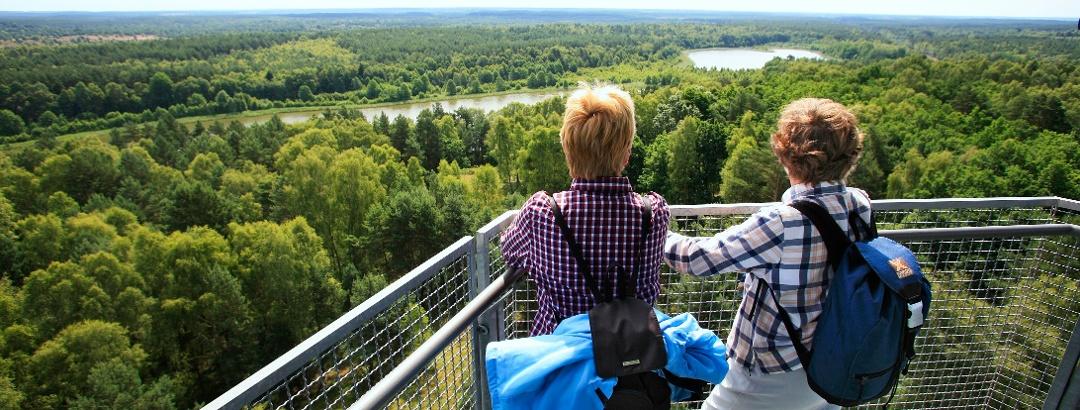 Beliebestes Wanderziel: der Käflingsbergturm bietet einen herrlichen Blick über den Müritz-Nationalpark
