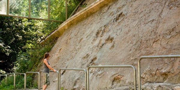 Beeindruckend präsentieren sich die Fußstapfen an der Steinwand