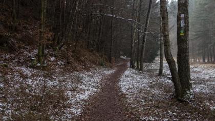 Weg mit Schnee