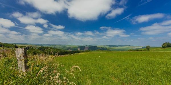 Vue panoramique du Steinkopf