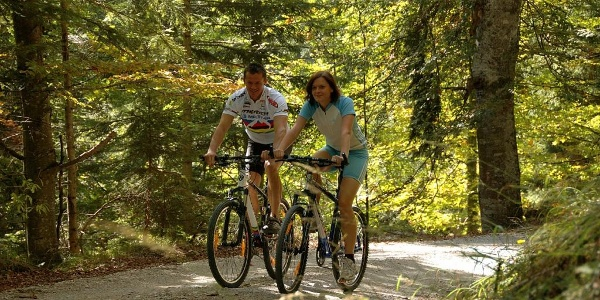 Mountainbiken in Haus-Aich-Gössenberg