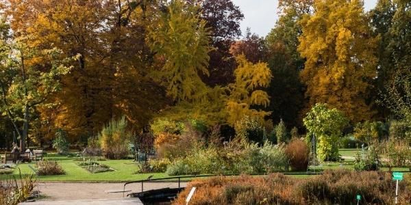 Bonn - Botanischer Garten