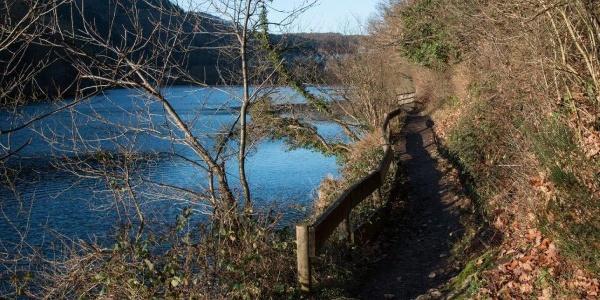 Uferweg am Heimbacher Staubecken