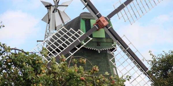 Mühle Anna Maria in Kutenholz