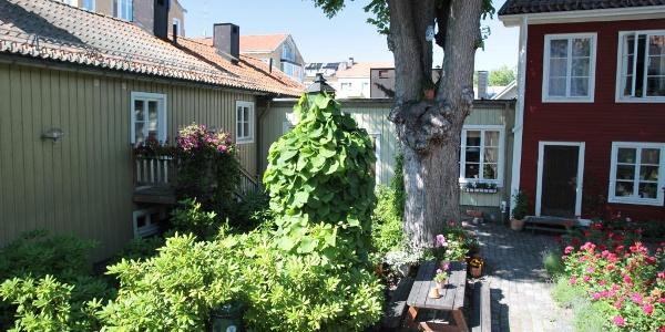Gefle Vandrarhem, the courtyard