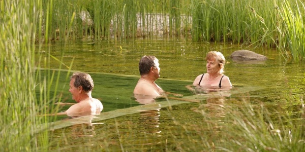 Naturschwimmteich