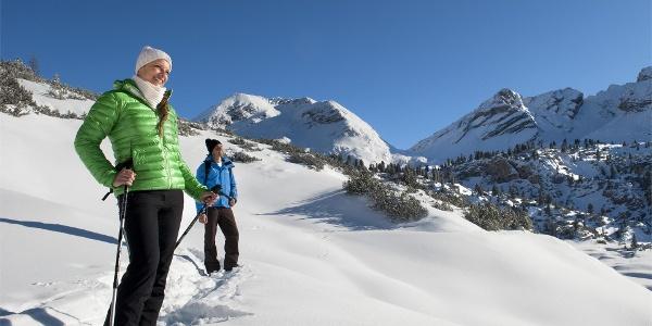 Snoweshoe hik