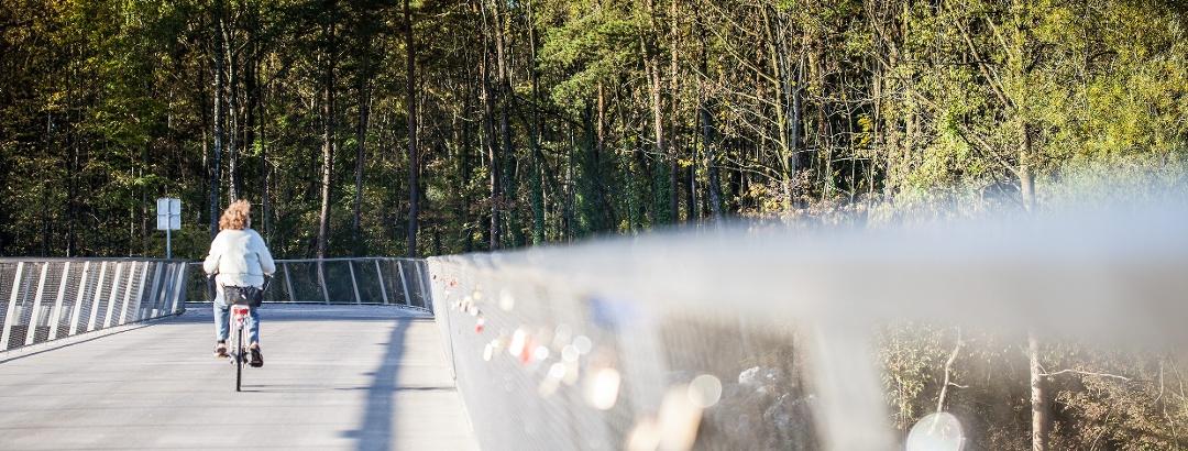 Radbrücke Bregenz-Hard