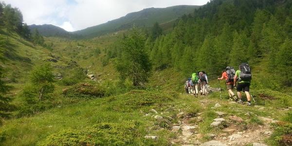 Rifugio Stella Alpina al Lago Corvo