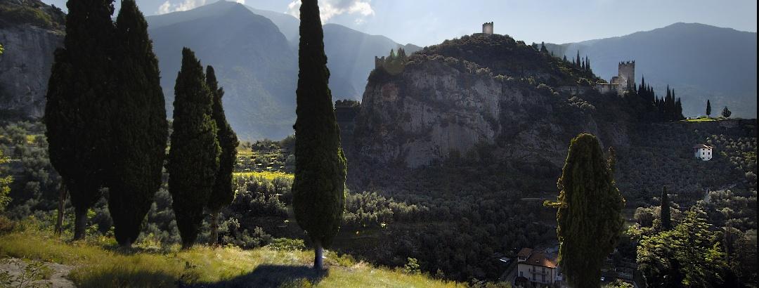 Laghel, il percorso nell'olivaia di Arco