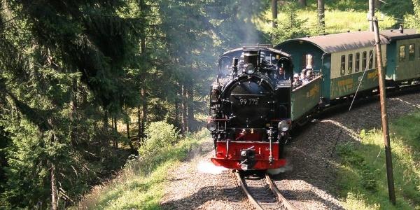 Fichtelbergbahn unterwegs im Erzgebirge