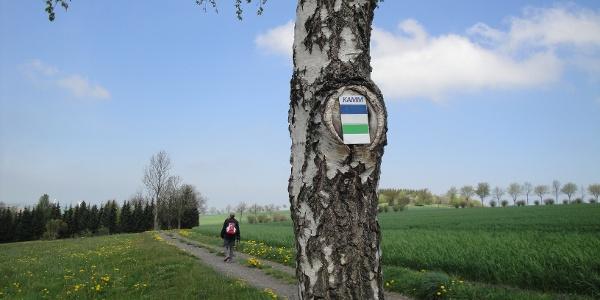 Auf dem Kammweg bei Clausnitz