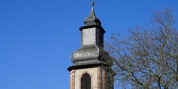 Vom Magnolienhain gibt es Aussicht auf die Sandkirche