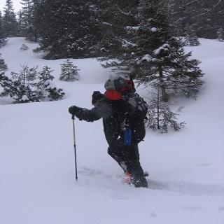 Plöschmitzzinken 2.095 m
