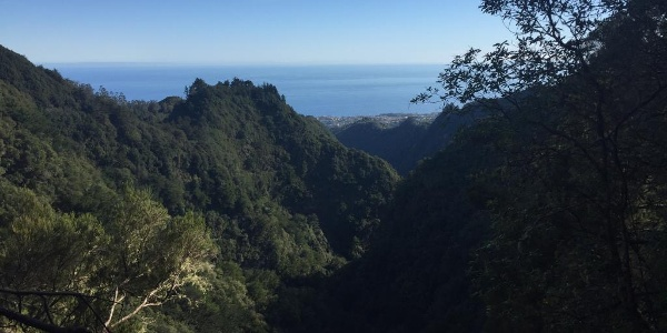 Enjoy beautiful views of Santana