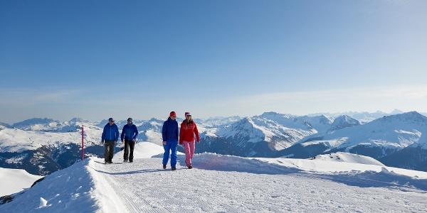 Wanderweg Weisshorn - Sattelhütte