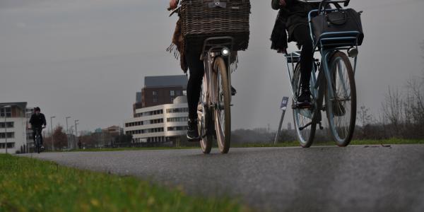 FLM - Fietsen Langs Maas te Venlo