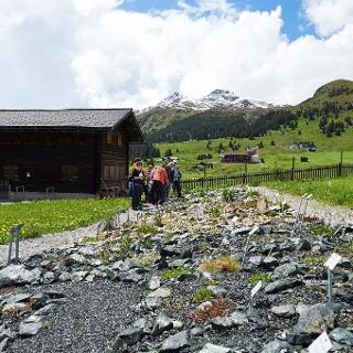 Der Alpengarten Maran