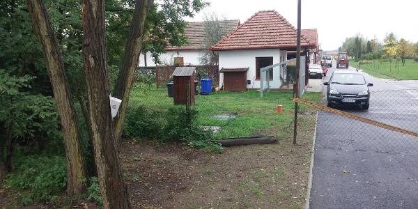 Bánk, Arbo Lovastanya (AKPH_52_2)