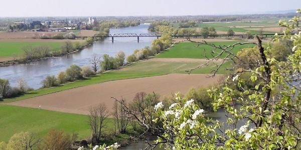 Frühlingsblick zur Donau
