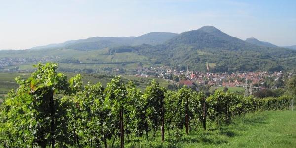 zwischen Albersweiler und Frankweiler