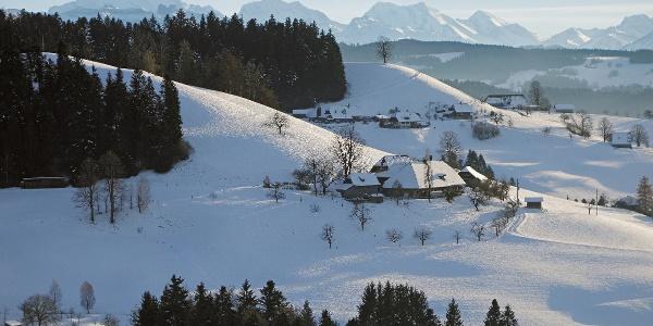 Oberhochfeld