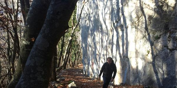 der Wanderweg Richtung Bocca di Tovo