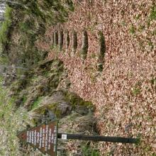 Eingang zur Höhle überhalb von Lerbach