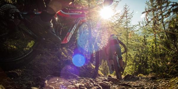 Mountainbiker auf der Abfahrt vom Piz Umbrail