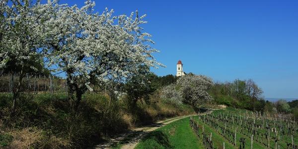 Wetterkreuzkirche bei Hollenburg