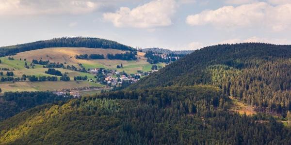 Aussicht vom Hasenhorn auf Todtnau Berg