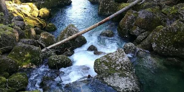 Blick auf das Flussbett am Tobelweg