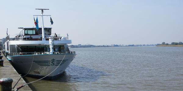 Flusskreuzfahrtschaff auf der Schelde