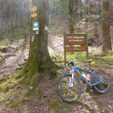 Deutsch-Französische Grenze am Florenberg