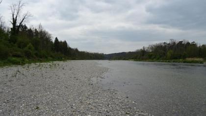 """3400 Neue Flussuferbank zum x-ten Male   47°35'32.2""""N 8°38'11.2""""E"""