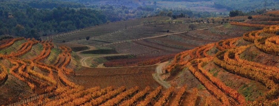 Weintourismus in Priorat